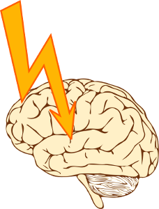 Senses Brain